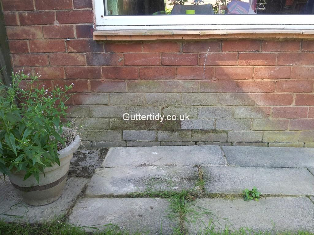 Aprox 7 course of brickwork with damp, cause by leaking gutter above