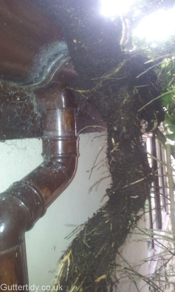 A downpipe blocked with weeds, next to the downpipe the weeds removed with the same outline as the downpipe